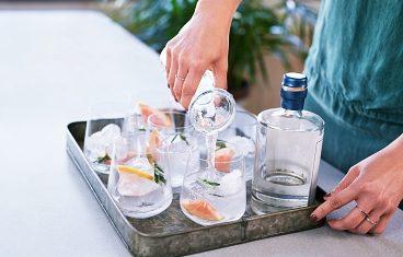 Online Gin-Tastings