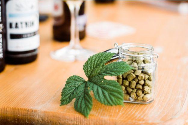Bierprobe Wien – Sensorik