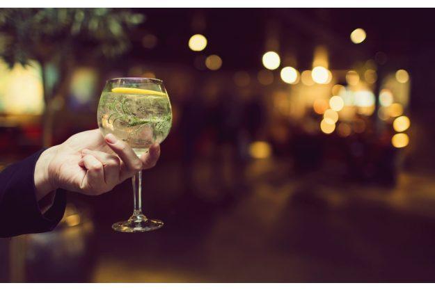 Gin-Tasting Wien –Fertiger Gin Tonic