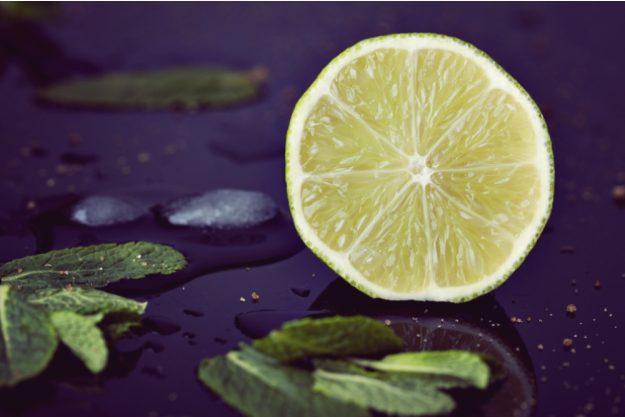Gin-Tasting Wien –Geschnittene Limette