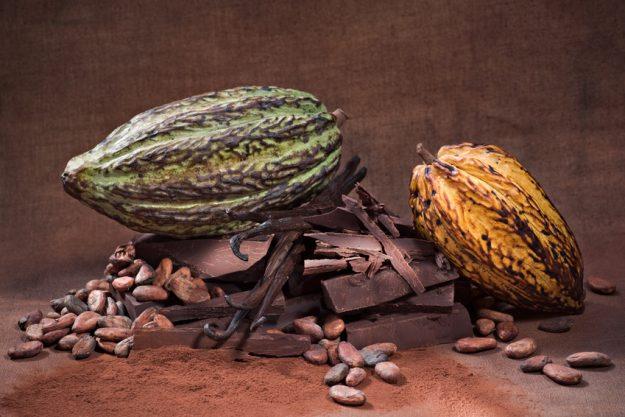 kulinarische Stadtführung Wien - Kakaobohnen