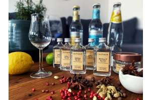 How-to-make-your-own-gin@Home