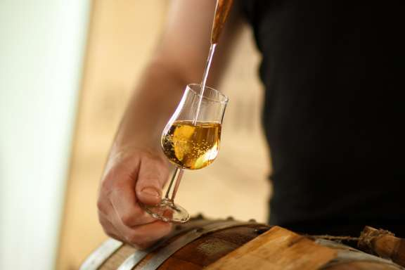 Whisky-Tasting Wien – Whisky aus Fass