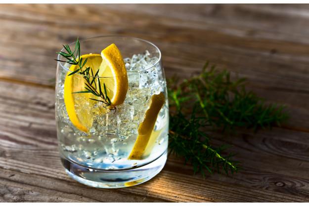 Gin-Tasting Wien – Gin und Zitrone