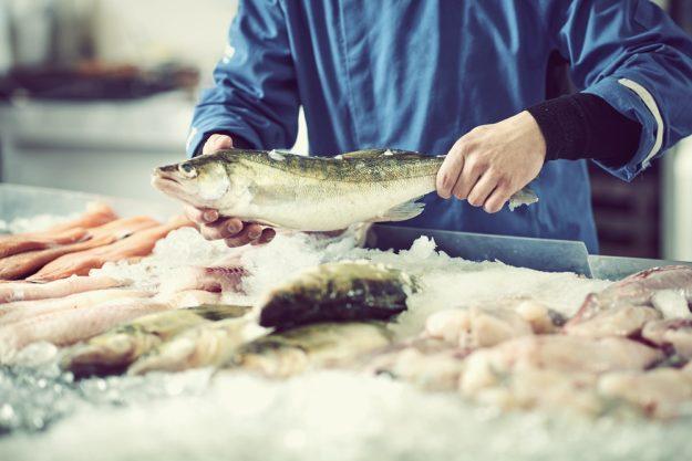 Fisch-Kochkurs Wien – frische Fische verarbeiten