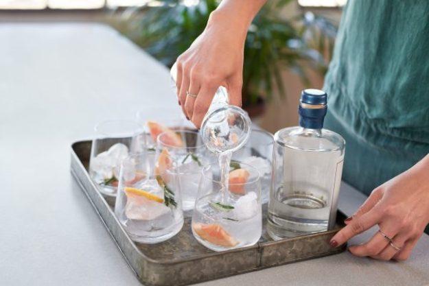Gin-Tasting Wien –Verkostung Gin
