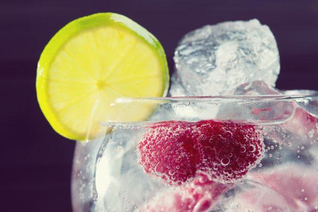 Gutschein Gin-Tasting – Gin verfeinert mit Himbeeren und Limetten