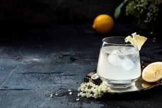 Cocktailkurs in Wien Die besten Gin-Cocktails